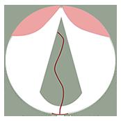 Logo Cranioroom